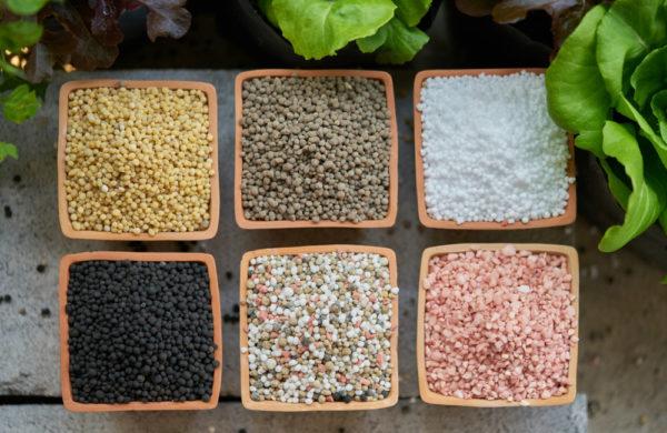 fertilizzanti-domande-e-risposte-hydrofert